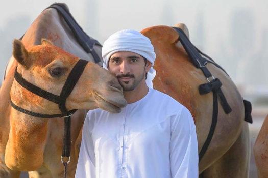 Hoàng tử Dubai: Còn có người thập toàn thập mỹ thế này sao?