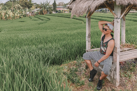 Padang Linjong: Những ruộng lúa xanh thẳm và yên bình