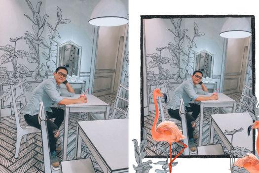 Photo Editor: Chèn chim Flamingo vào ảnh bằng điện thoại như thế nào?